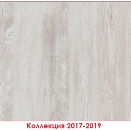 H1401 ST22 Сосна Касцина